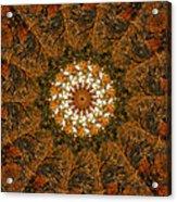 Autumn Mandala 4 Acrylic Print