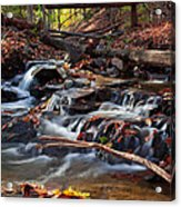 Autumn Moving Water With Foliage Acrylic Print