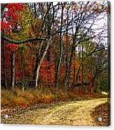 Autumn On Bottomland Road Acrylic Print