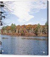 Autumn On Mill Pond Acrylic Print