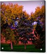 Autumn On The Fairway Acrylic Print