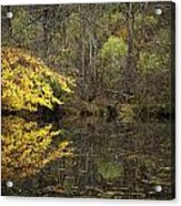 Autumn On The Pond Acrylic Print