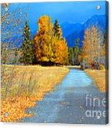 Autumn Perspective Acrylic Print