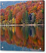Autumn Reflections On Lake Bohinj In Slovenia Acrylic Print