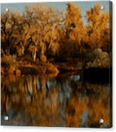 Autumn Reflections Painterly Acrylic Print