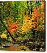 Autumn Reflects Acrylic Print
