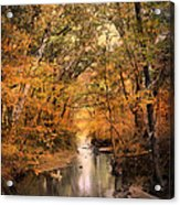 Autumn Riches 2 Acrylic Print