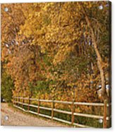 Autumn  Road To The Ranch Acrylic Print