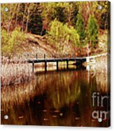 Autumn Shine  Acrylic Print