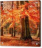 autumn skirt I Acrylic Print