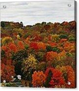 Autumn Spectacular Acrylic Print
