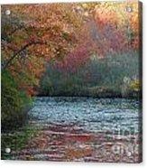 Autumn Splendor 1 Acrylic Print