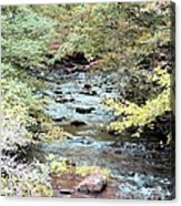 Autumn Streams Acrylic Print