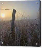 Autumn Sunrise Over Hoar Frost-covered Acrylic Print