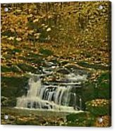 Autumn Surrounded In Color Acrylic Print