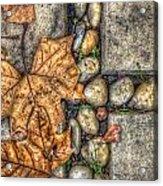 Autumn Texture Acrylic Print