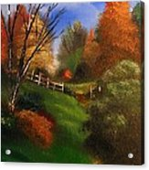 Autumn Trail  Acrylic Print by Crispin  Delgado