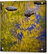 Autumn Tree Reflections With Rocks On The Muskegon River Acrylic Print