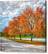 Autumn Trees At Busch Acrylic Print