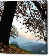 Autumn View Acrylic Print by Bruno Santoro