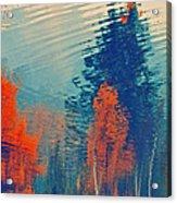 Autumn Vision Acrylic Print