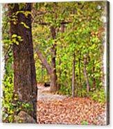 Autumn Walk - Impressions Acrylic Print