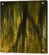 Autumn Water Reflection Abstract I Acrylic Print
