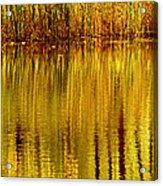 Autumn Water Reflection Abstract II Acrylic Print