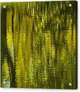 Autumn Water Reflection Abstract IIi Acrylic Print