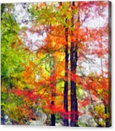 Autumnal Rainbow Acrylic Print