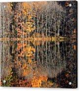 Autumns Art Acrylic Print