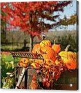 Autumns Colorful Harvest  Acrylic Print