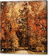 Autumn's Entrance Acrylic Print by Jai Johnson