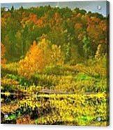 Autumn's Glory Acrylic Print