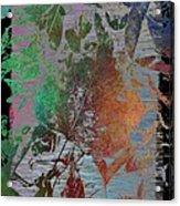 Autumns Splendor Acrylic Print