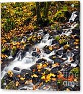 Autumn's Staircase Acrylic Print by Mike  Dawson