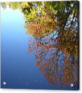 Autumn's Watery Reflection Acrylic Print