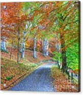 Autumns Way Vert Acrylic Print by John Kelly