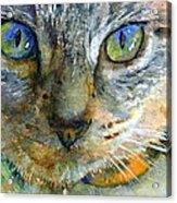 Avalon 2 Acrylic Print