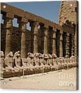 Avenue Of The Sphinx Acrylic Print