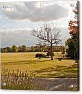 Avery Hill Parkland Acrylic Print