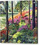 Azalea Forest Grove Acrylic Print