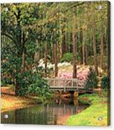 Azaleas And Footbridge Acrylic Print