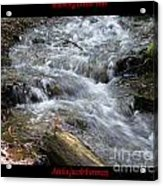 Babbling Brook Two Acrylic Print