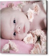 Baby In Bed Of Roses Acrylic Print