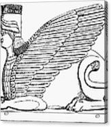 Babylonian Sphinx Acrylic Print