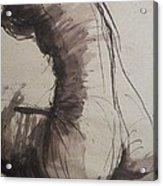 Back Torso - Sketch Of A Female Nude Acrylic Print