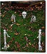 Back Yard Bone Yard Acrylic Print by LeeAnn McLaneGoetz McLaneGoetzStudioLLCcom