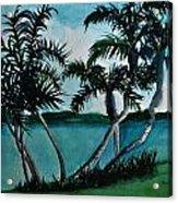 Backyard Palms Acrylic Print