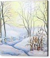 Backyard Winter Scene Acrylic Print